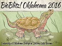 Bioblitz! Oklahoma 2016 logo featuring snapping turtle
