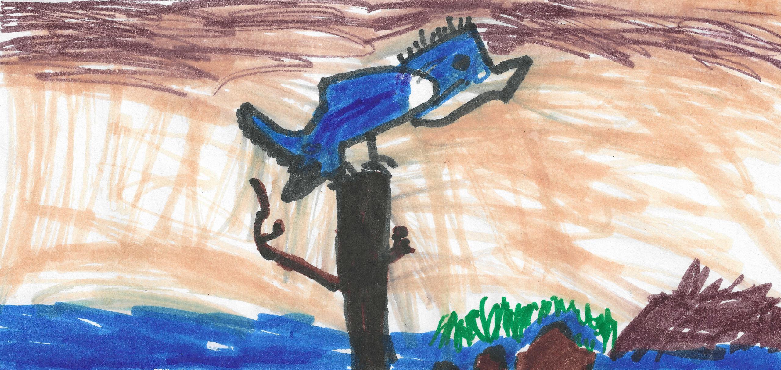 Belted Kingfisher by Merek DuFran