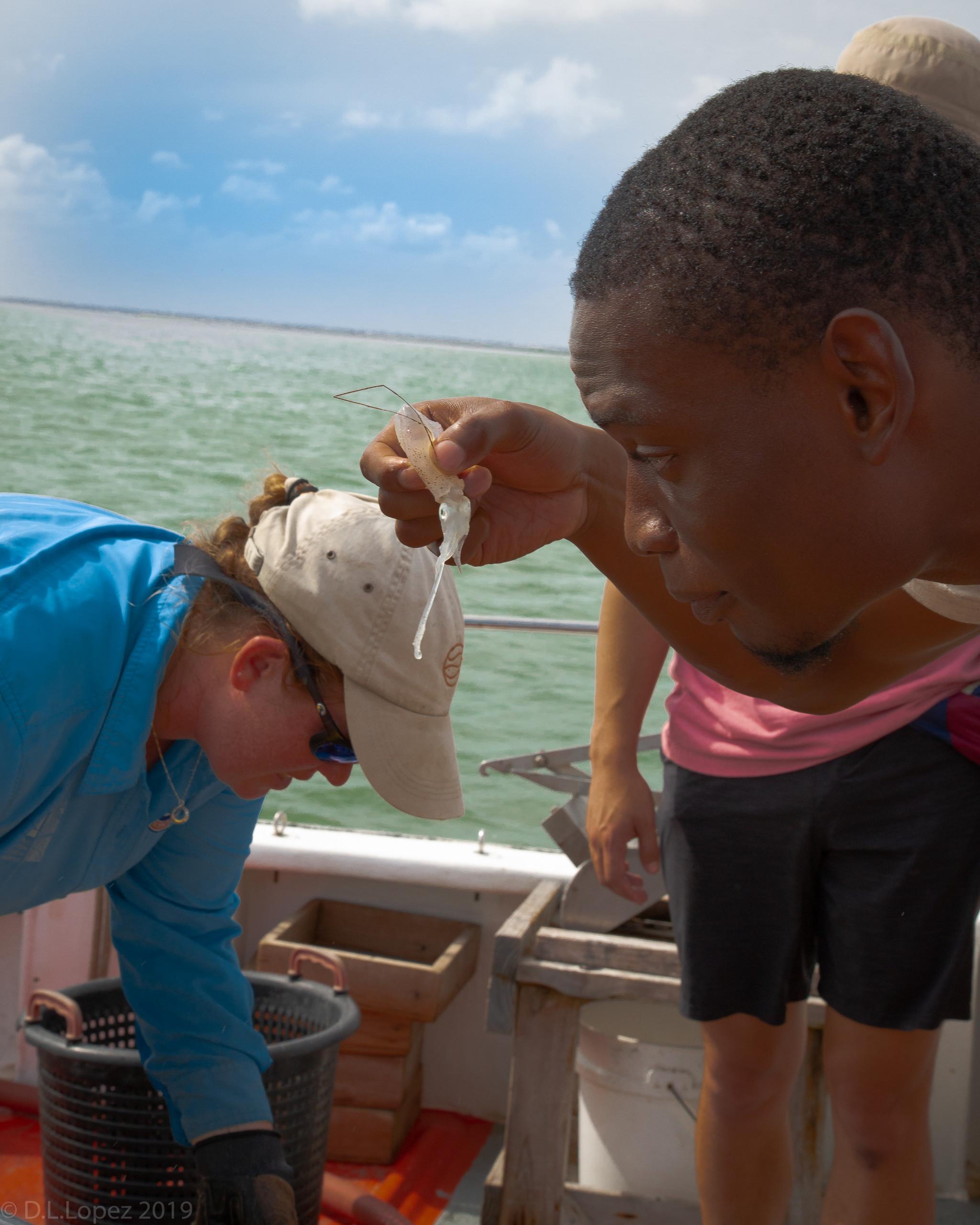Josh Anadu looking at a squid